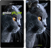 """Чохол на Sony Xperia XA Красивий кіт """"3038c-399"""""""