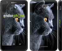 """Чехол на Sony Xperia E4 Dual Красивый кот """"3038c-87"""""""