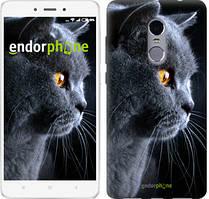 "Чохол на Xiaomi Redmi Note 4 Красивий кіт ""3038c-352"""