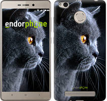 "Чехол на Xiaomi Redmi 3s Красивый кот ""3038c-357"""