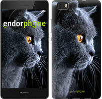 "Чохол на Huawei Ascend P8 Lite Красивий кіт ""3038u-126"""