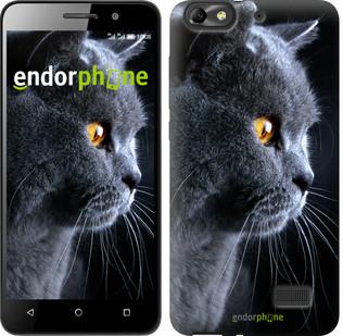 "Чехол на Huawei Honor 4C Красивый кот ""3038u-183"""