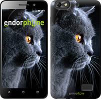 """Чохол на Huawei Honor 4C Красивий кіт """"3038u-183"""""""