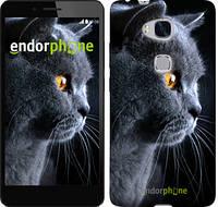 "Чехол на Huawei Honor 5X Красивый кот ""3038u-176"""