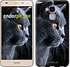 "Чехол на Huawei Honor 5C Красивый кот ""3038u-356"""