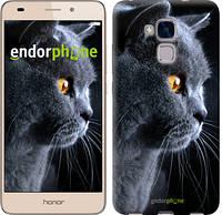 """Чохол на Huawei Honor 5C Красивий кіт """"3038u-356"""""""