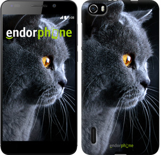 "Чехол на Huawei Honor 6 Красивый кот ""3038u-175"""