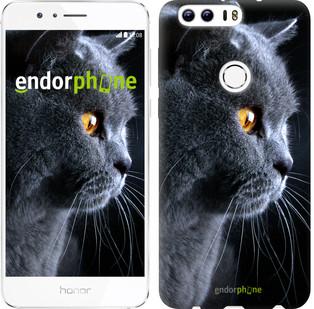 "Чехол на Huawei Honor 8 Красивый кот ""3038u-351"""
