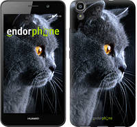 """Чохол на Huawei Y6 Красивий кіт """"3038u-333"""""""