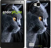 """Чохол на Huawei Y6 Pro Красивий кіт """"3038u-355"""""""
