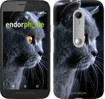 "Чохол на Motorola Moto G3 Красивий кіт ""3038u-318"""