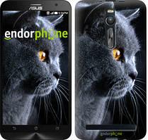 "Чохол на Asus Zenfone 2 ZE551ML Красивий кіт ""3038c-122"""