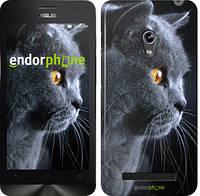 """Чехол на Asus Zenfone 5 Красивый кот """"3038c-81"""""""