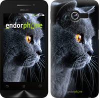 "Чехол на Asus ZenFone Max ZC550KL Красивый кот ""3038c-271"""