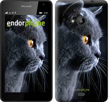 """Чохол на Microsoft Lumia 640 Красивий кіт """"3038c-273"""""""