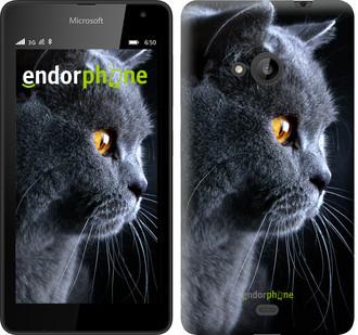 """Чехол на Microsoft Lumia 535 Красивый кот """"3038u-130"""""""