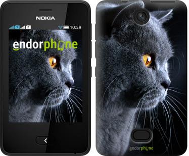 """Чехол на Nokia Asha 501 Красивый кот """"3038u-209"""""""