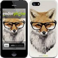"""Чохол на iPhone SE Лис в окулярах """"2707c-214"""""""
