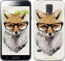 """Чехол на Samsung Galaxy S5 Duos SM G900FD Лис в очках """"2707c-62"""""""