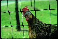 Сетка для ограждения животных и птиц 1,5х200 (Италия) АВИАРИ, фото 1