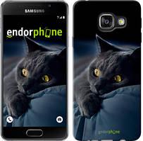"Чохол на Samsung Galaxy A3 (2016) A310F Димчастий кіт ""825c-159"""
