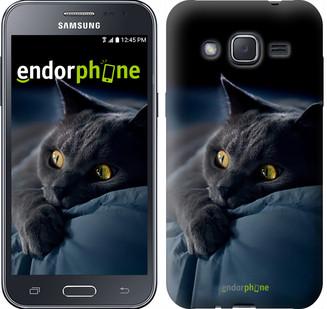 "Чехол на Samsung Galaxy J2 J200H Дымчатый кот ""825c-190"""