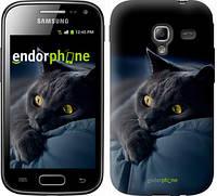 """Чехол на Samsung Galaxy Ace 2 I8160 Дымчатый кот """"825u-250"""""""