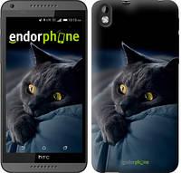 """Чехол на HTC Desire 816 Дымчатый кот """"825u-169"""""""