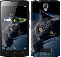 """Чохол на Lenovo A2010 Димчастий кіт """"825c-216"""""""