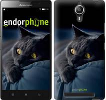 """Чохол на Lenovo Vibe C2 Димчастий кіт """"825c-397"""""""