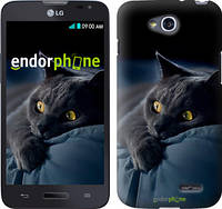 "Чехол на LG L80 Dual D380 Дымчатый кот ""825u-332"""
