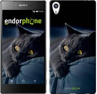 "Чехол на Sony Xperia Z5 Premium Дымчатый кот ""825u-345"""
