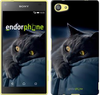 """Чехол на Sony Xperia Z5 Compact E5823 Дымчатый кот """"825u-322"""""""