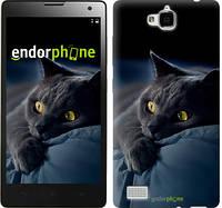 "Чехол на Huawei Y6 Pro Дымчатый кот ""825u-355"""