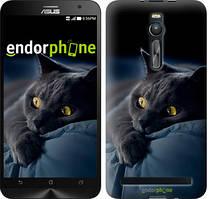 "Чохол на Asus Zenfone 2 ZE551ML Димчастий кіт ""825c-122"""