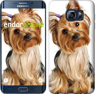 """Чехол на Samsung Galaxy S6 Edge Plus G928 Йоркширский терьер с хвостиком """"930u-189"""""""
