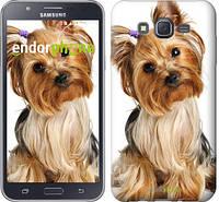 """Чохол на Samsung Galaxy J7 J700H Йоркширський тер'єр з хвостиком """"930c-101"""""""