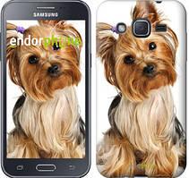 """Чохол на Samsung Galaxy J2 J200H Йоркширський тер'єр з хвостиком """"930c-190"""""""