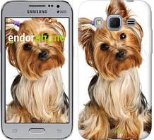 """Чохол на Samsung Galaxy J1 Mini J105H Йоркширський тер'єр з хвостиком """"930c-258"""""""