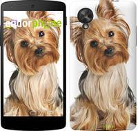"""Чехол на LG X Power K220DS Йоркширский терьер с хвостиком """"930c-398"""""""