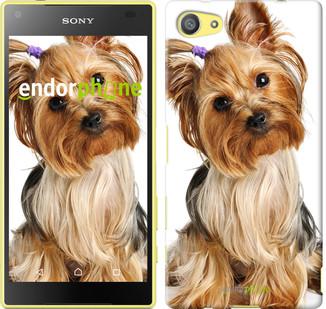 """Чохол на Sony Xperia Z5 Compact E5823 Йоркширський тер'єр з хвостиком """"930u-322"""""""