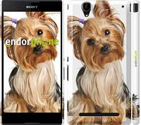 "Чехол на Sony Xperia T2 Ultra Dual D5322 Йоркширский терьер с хвостиком ""930c-92"""
