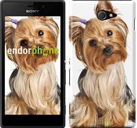 "Чехол на Sony Xperia M2 dual D2302 Йоркширский терьер с хвостиком ""930c-61"""
