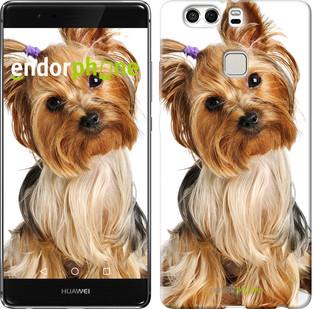"""Чехол на Huawei P9 Plus Йоркширский терьер с хвостиком """"930u-300"""""""