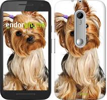"Чохол на Motorola Moto G3 Йоркширський тер'єр з хвостиком ""930u-318"""