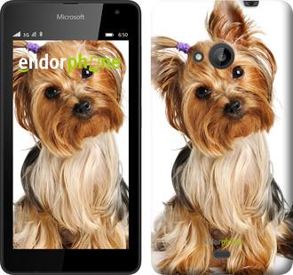 """Чехол на Microsoft Lumia 535 Йоркширский терьер с хвостиком """"930u-130"""""""