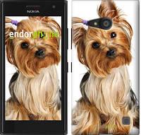"""Чехол на Nokia Lumia 730 Йоркширский терьер с хвостиком """"930u-204"""""""