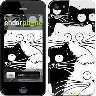 """Чохол на iPhone SE Коти v2 """"3565c-214"""""""