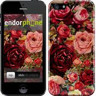 "Чохол на iPhone SE Квітучі троянди ""2701c-214"""