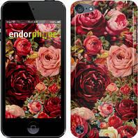 "Чохол на iPod Touch 6 Квітучі троянди ""2701c-387"""